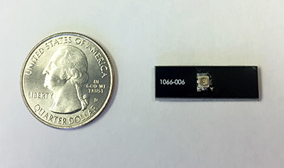 Southwest Antennas C-Band concealment antenna with U.FL RF connector. US Quarter shown for scale.